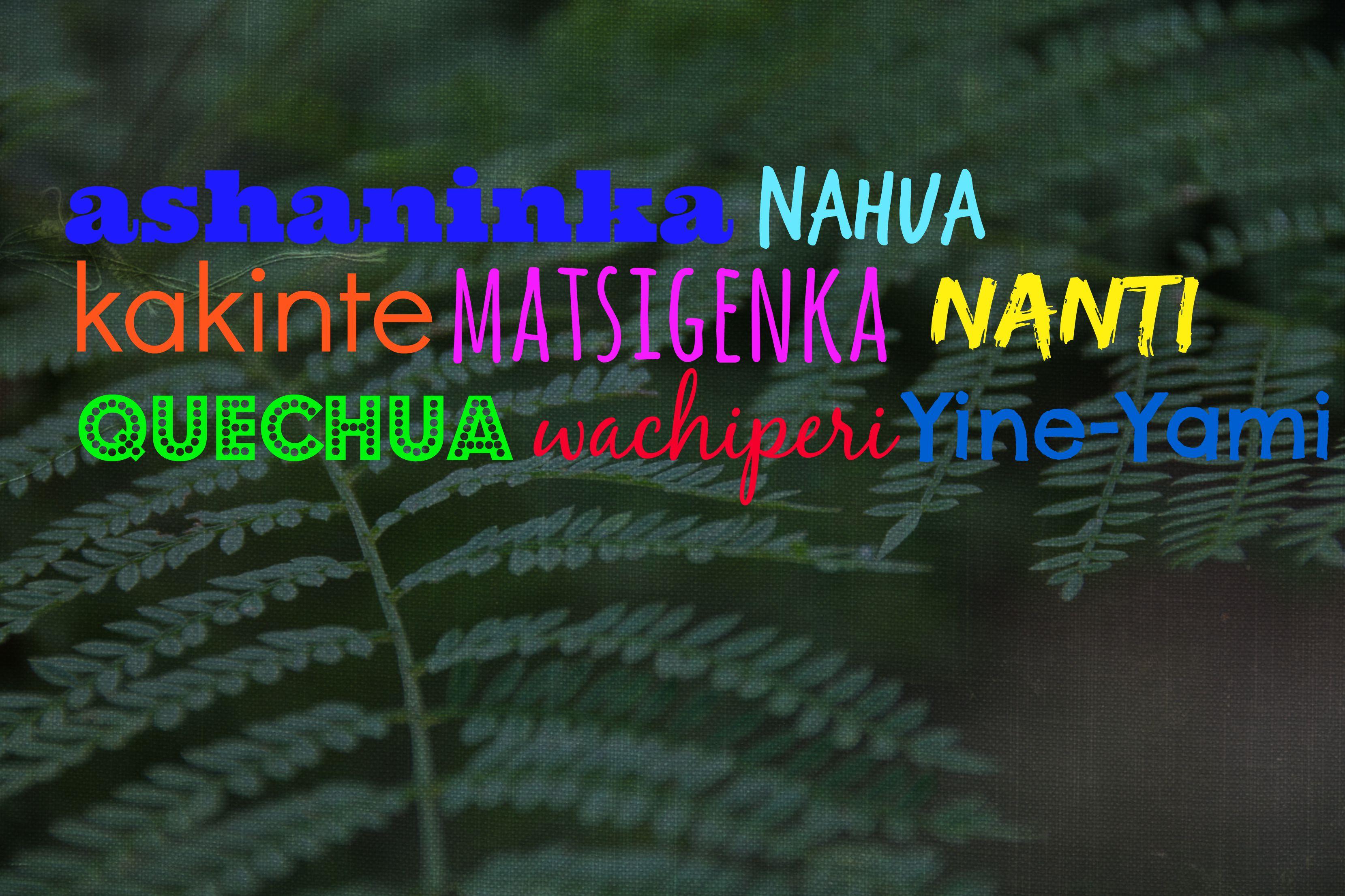 Indigene Sprachen Cusco